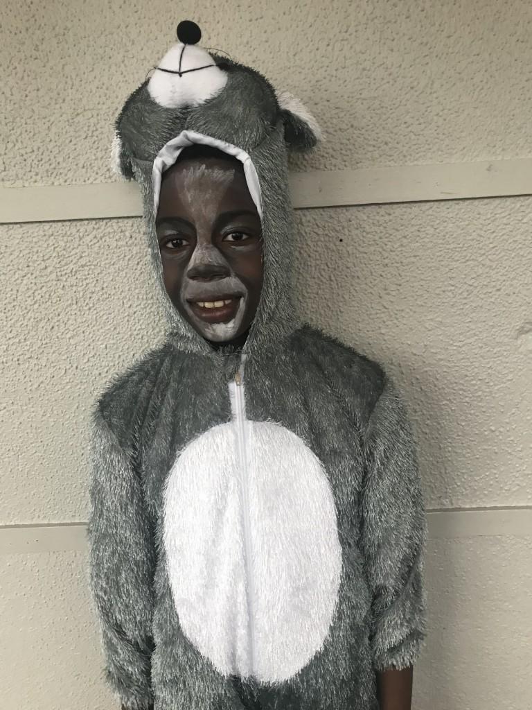 The Donkey